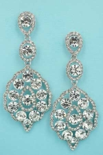 Clear/Silver Framed Multiple Round Stone 2.5'' Earring