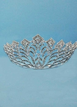 Clear/Silver Big Crown Branch Shape Tiara
