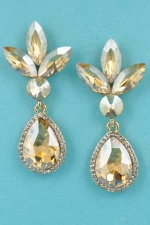 "Light Clear/Clear Gold  Flower Shape 2"" Earring"